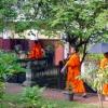 5 Luang Prabang giovani studenti buddisti
